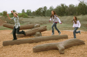 Nature's Choice Log Playground Equipment