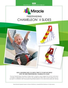 Miracle Recreation Chameleon Slides