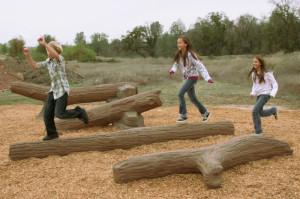 Nature's Choice Log Playground Equipment