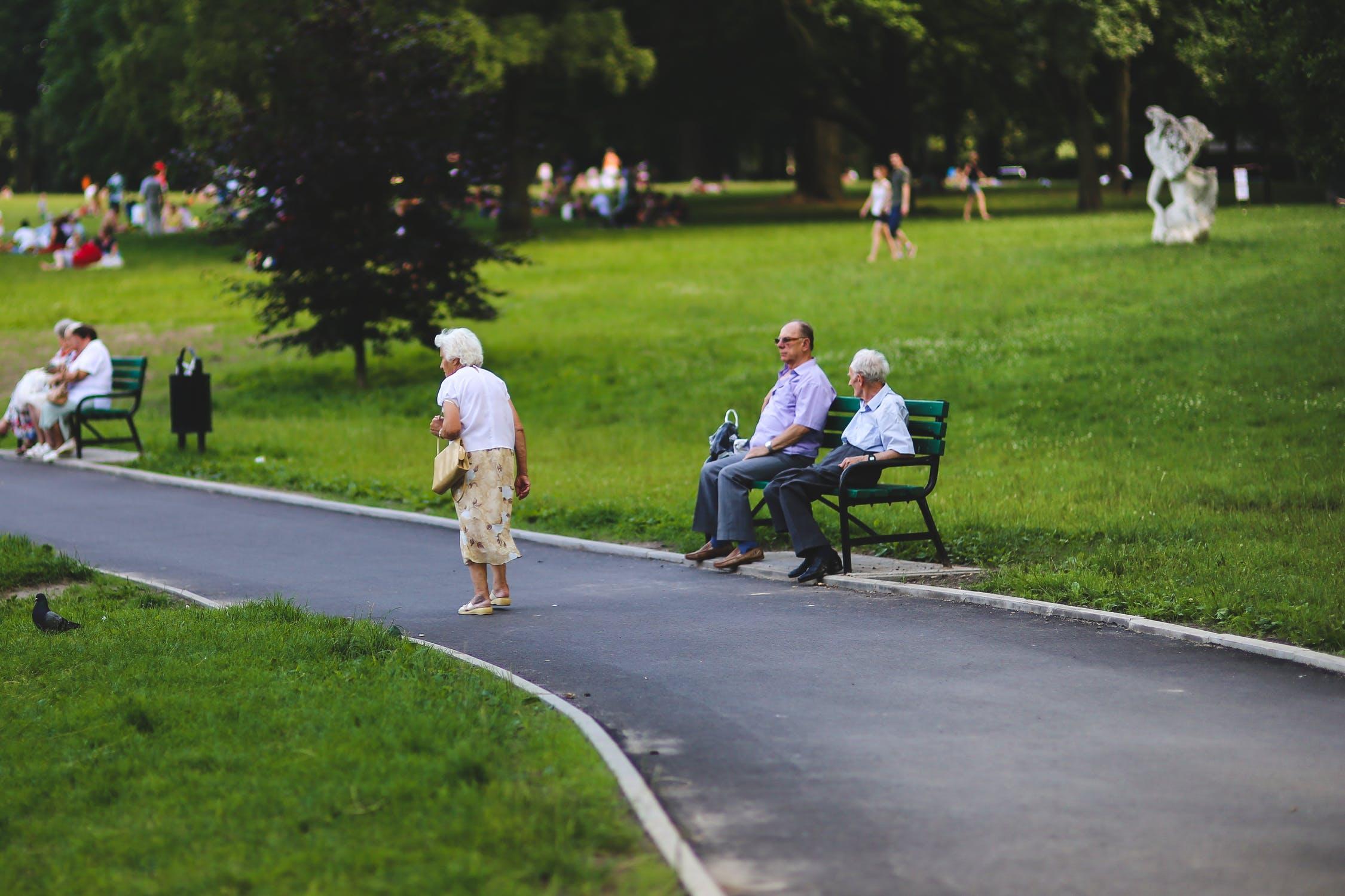 Designing a Senior Park
